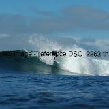DSC_2263.thumb.jpg