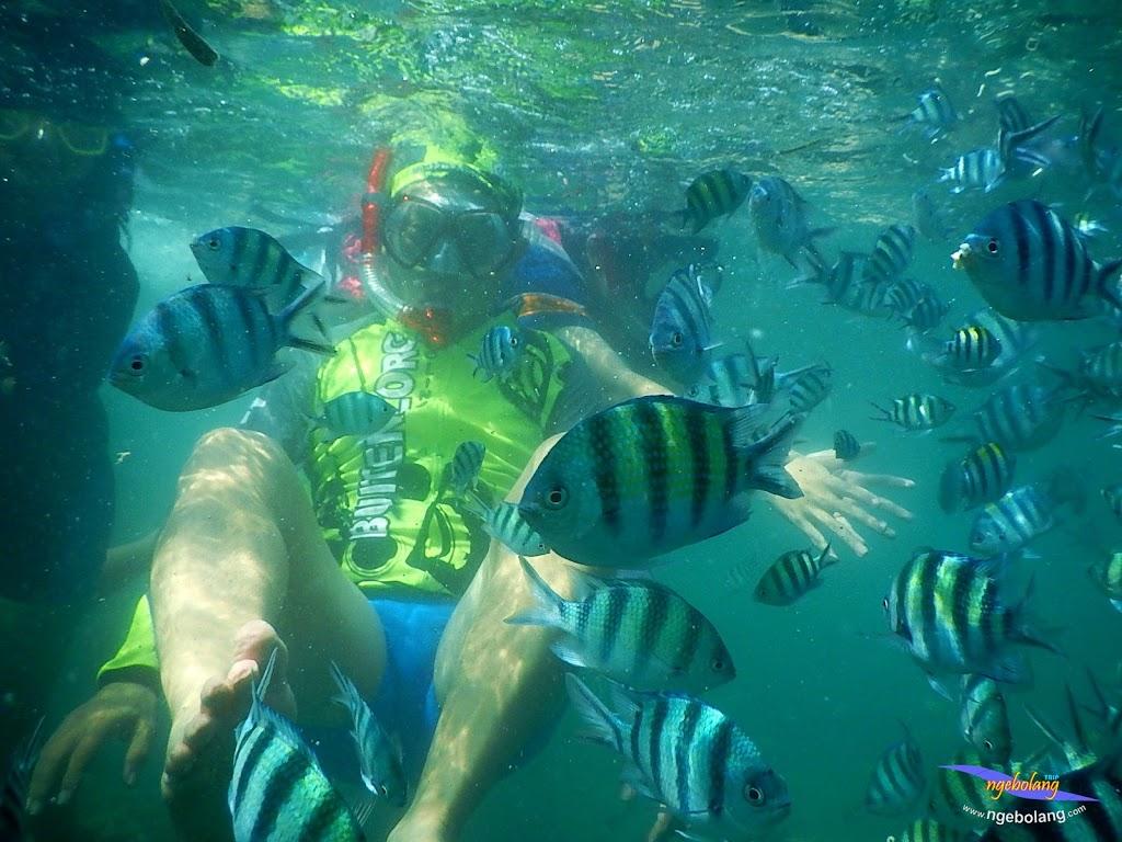 family trip pulau pari 140716 Nikon 26
