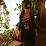 Kelly O Soy's profile photo