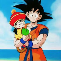 who is videl San contact information