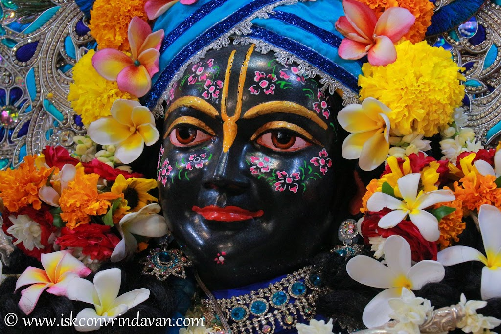 ISKCON Vrindavan Deity Darshan 20 Sep 2016 (17)