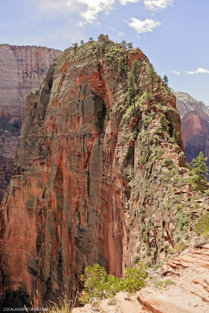 Angels Landing Hike (15 Greatest Places to Conquer Your Fear Of Heights).