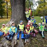 Podzim v 1. třídě Pod Lipkami