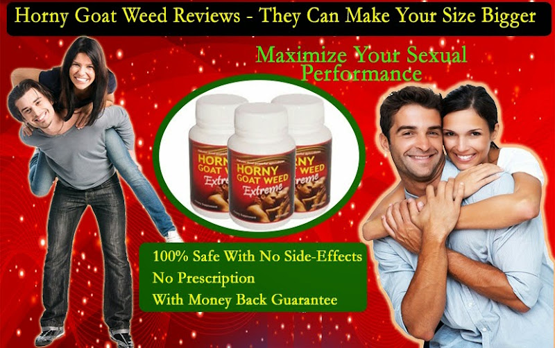 Buy Horny Goat Weed