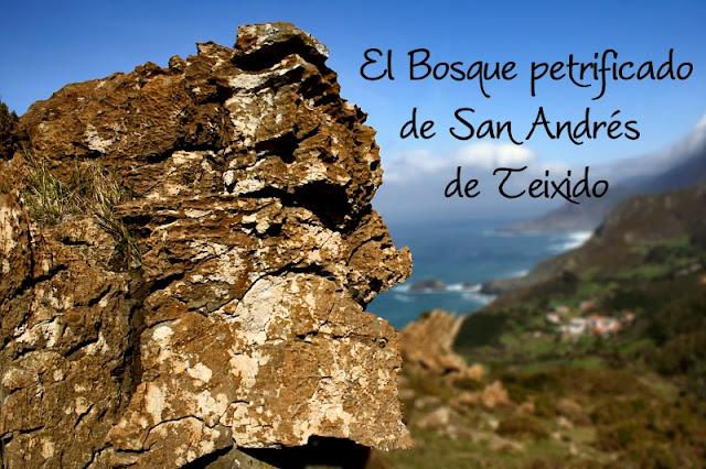 Bosque Petrificado San Andrés de Teixido