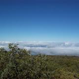 Hawaii Day 8 - 100_8040.JPG