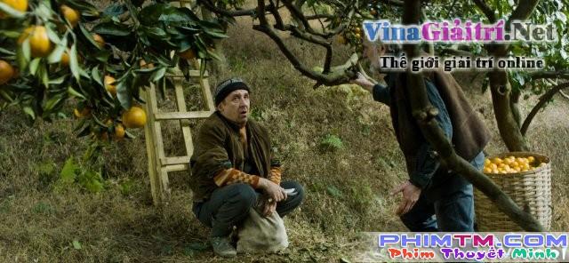 Xem Phim Mùa Quýt - Mandariinid - phimtm.com - Ảnh 1