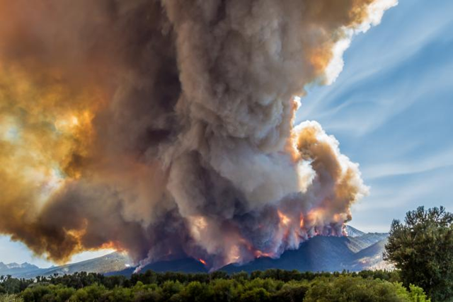 In July and August 2016, the Roaring Lion fire devoured more than 8,000 acres of forest, along with over 60 homes and outbuildings in eastern Montana's Bitterroot Range. Here, the fire burns through dense conifers on 31 July 2016. Photo: Mike Daniels