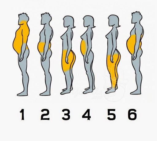أي جزء من جسمكم أكثر سمنة ؟ إليكم السبب والحل