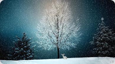 winter-2896970_1920