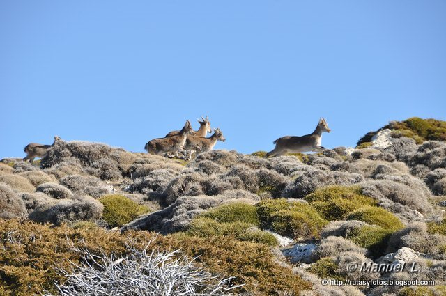 Subida al pico Mágina y refugio Miramundos