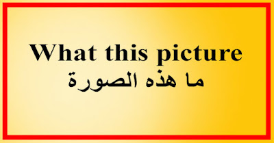 What this picture ما هذه الصورة
