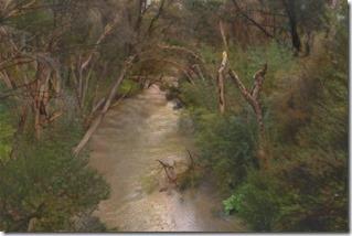 Dandenong Creek styled on McCubbin