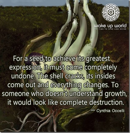 seed to achieve expression