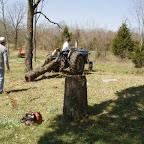 Owen pulls another log