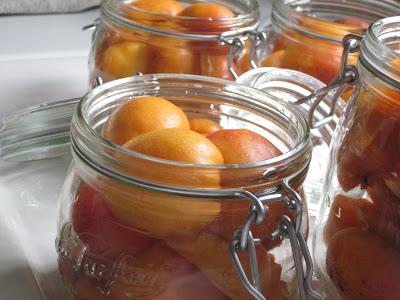 abricots au sirop léger dans Fou-dingue IMG_0067