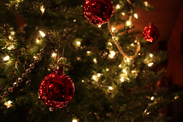 2009 Clubhouse Christmas Decorating Party - IMG_2598.JPG