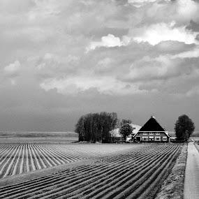 Views over Friesland by Mike Bing - Black & White Landscapes ( clouds, dike, holland, ploughed, netherlands, friesland )