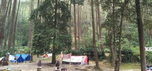 Camping Ground Hutan Pinus Sekipan
