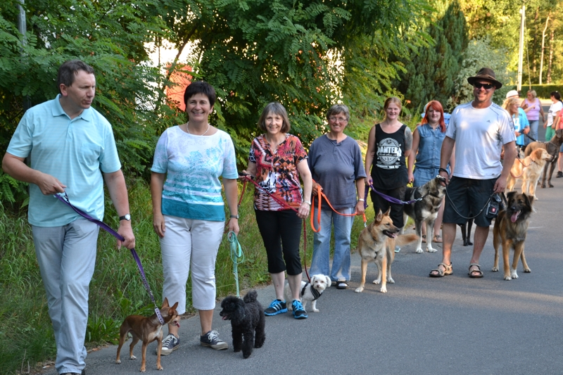 On Tour am Obersee bei Eschenbach: 21. Juli 2015 - DSC_0190.JPG