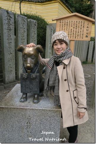 四國香川 高松 金刀比羅宮 (64)