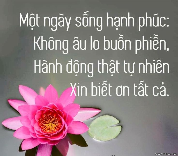 song-biet-on-hanh-phuc