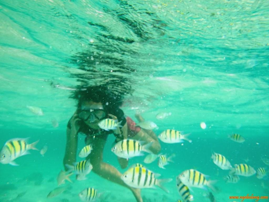 ngebolang-pulau-harapan-singletrip-nov-2013-wa-07 ngebolang-trip