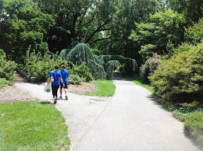 Photo: garden path