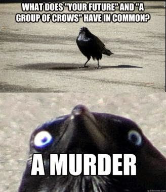 murder%2Bcrows.jpeg