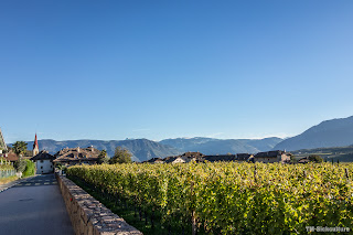 24.10.2014 Monte Roen