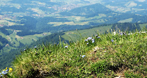 Blick nahe Gipfelkreuz Hochgrat Nagelfluhkette