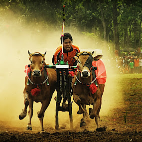 karapan sapi by An'naas Sobrie Al Arif - People Portraits of Men ( indonesia, lanscape, people, man, culture )