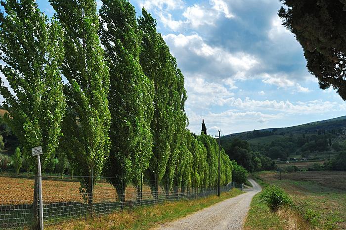 Toscana08.JPG