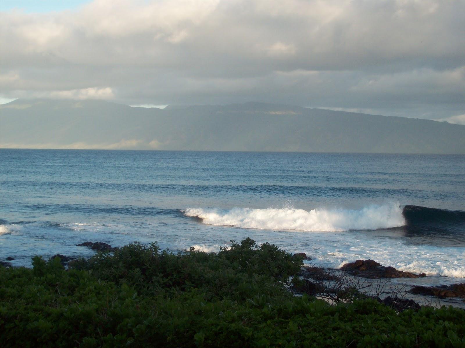 Hawaii Day 6 - 114_1685.JPG