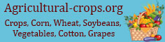 Agricultural Production - Crops, Corn, Wheat, Soybeans, Vegetables, Cotton, Grapes