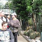 Botanická 090.jpg