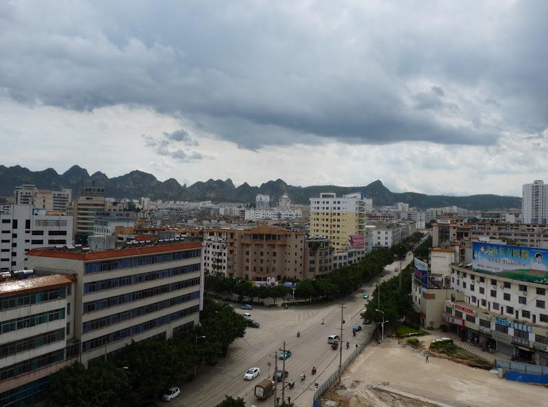 Chine.Yunnan Wen shan et BA MEI 1 - P1260789.JPG