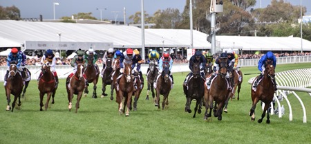 caulfield cup_finish 3
