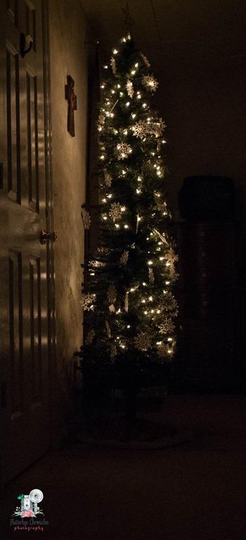 [Christmas+trees-2%5B4%5D]