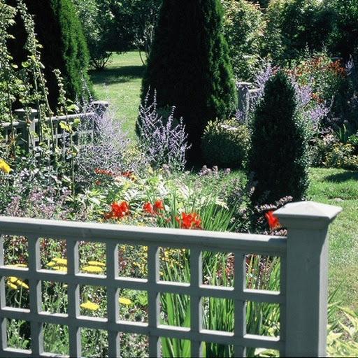 Summer in the flower garden.