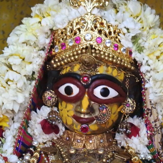 Radha Govind Devji Deity Darshan 02 Mar 2016 (4)