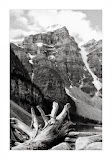 """Lake Moraine Peak"" by Tracy Williams - 1st ""A"" General"