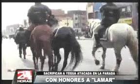 Lamar y sus hermanos los Toros