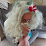Helena Stirkova's profile photo