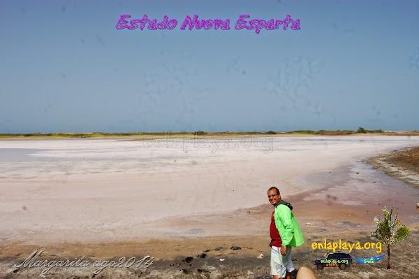Salina de Pampatar NE022, estado Nueva Esparta, Margarita