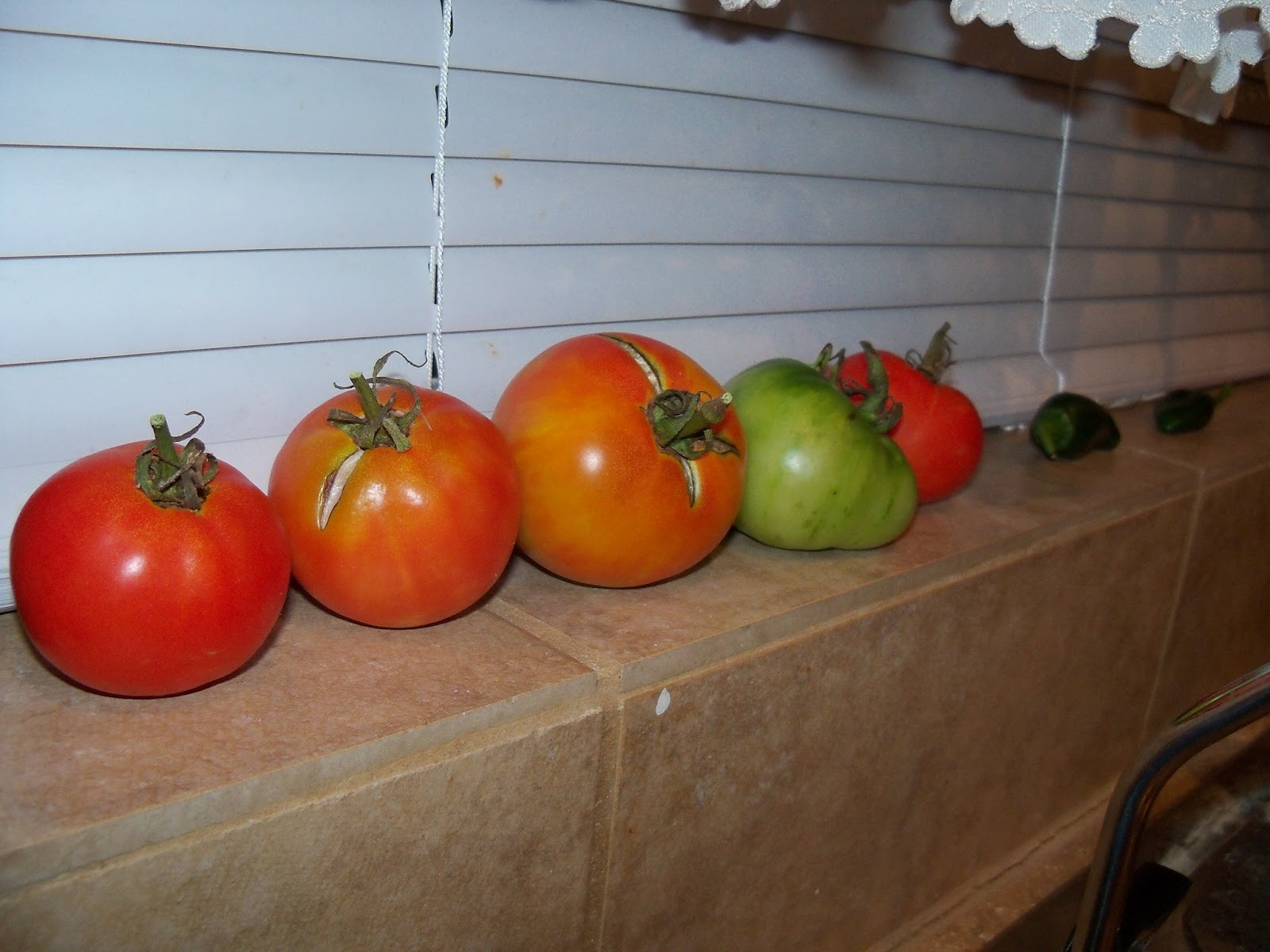 Gardening 2011 - 115_1033.JPG
