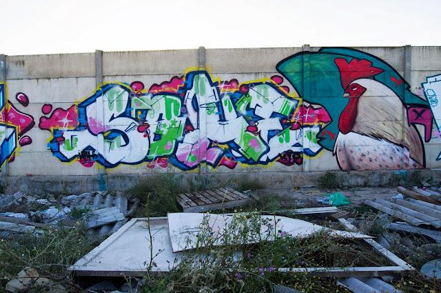 sohe (11)