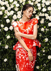 Ngô Thanh Vân Viet Nam Actor