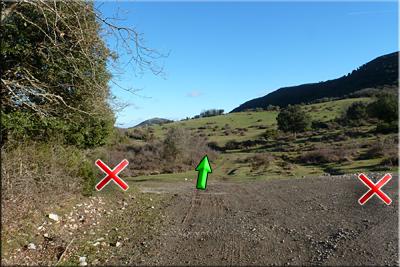 Llegamos a otro cruce de pistas, seguimos de frente por la pista herbosa