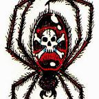 Photo - Spider Designs